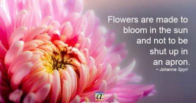 Johanna Spyri Quotes on Flowers and the Sun