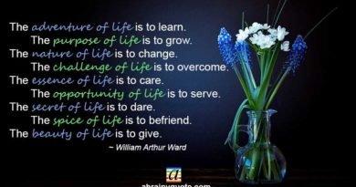 William Arthur Ward Quotes on Adventure of Life